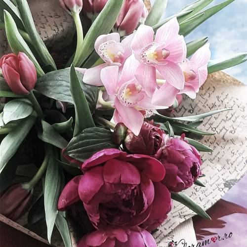 Floramor Flowers Events